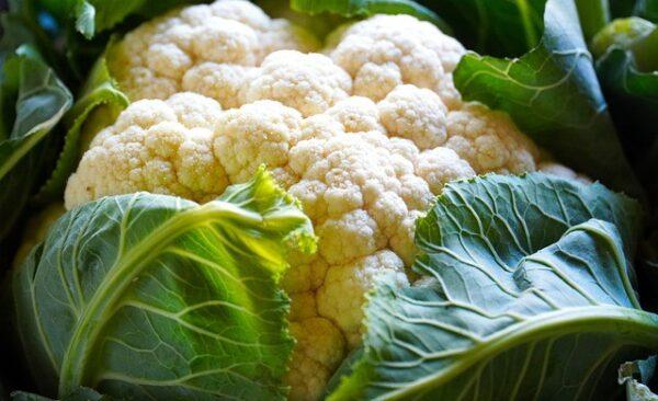 Chou-fleur biologique congelé