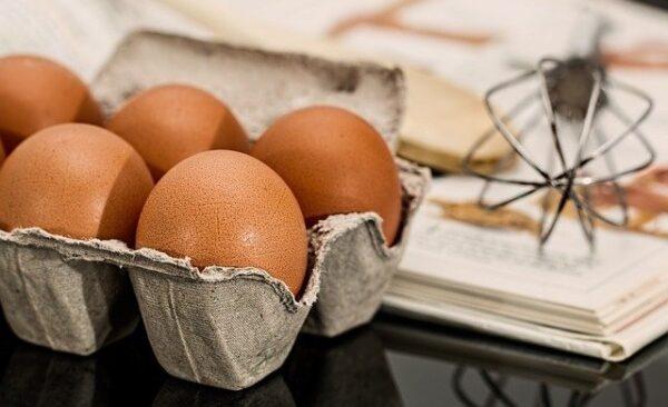 œufs bios